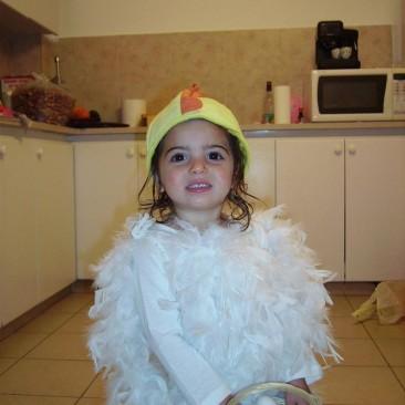15. תחפושות של תרנגולת - עדי אשכנזי
